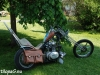 14custombikeshow_sw230
