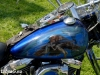 14custombikeshow_sw167
